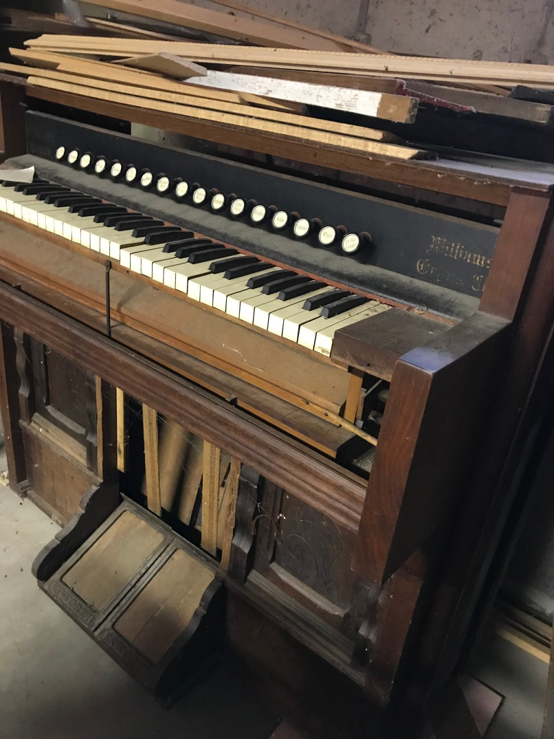 organ picture
